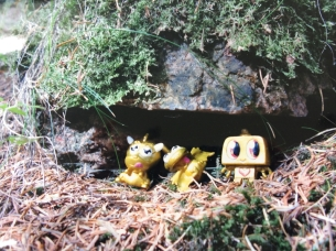 under the log