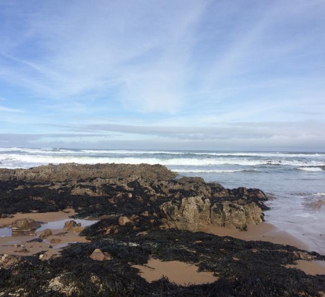 Cullen Beach7176